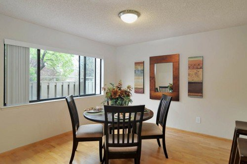 Abundant Natural Light - 3705 Terstena Pl.