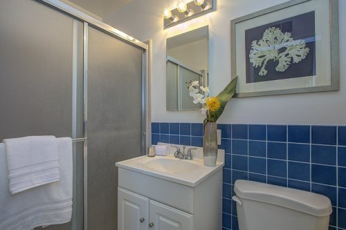 Master Bathroom - 1700 Dalehurst Ave
