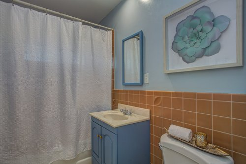 Hall Bathroom - 1700 Dalehurst Ave